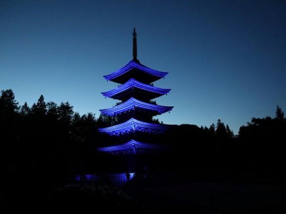 「観光応援ページ用画像」_定義五重塔ライトアップ